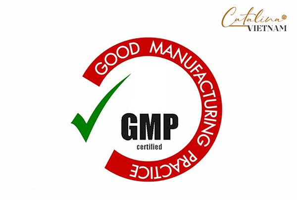 GMP-catalina