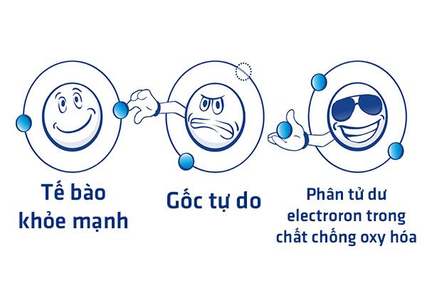chat-chong-oxy-hoa-chum-ngay