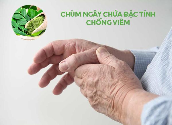 chum-ngay-chua-dac-tinh-chong-viem