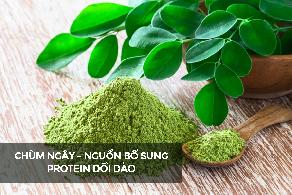 chum-ngay-cung-cap-protein